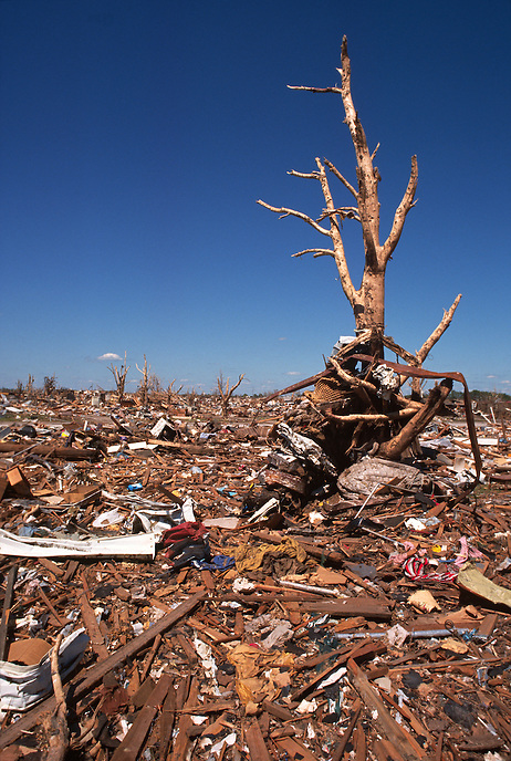 The remains of a lone tree stand sentry over devastation left in the wake of a F-5 tornado in Moore Oklahoma on May 3rd, 1999.