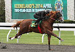 April 03, 2014: Hip 66 Kitten's Joy - Wise Impression consigned by Eddie Woods worked 1/8 in 09:3.  Candice Chavez/ESW/CSM