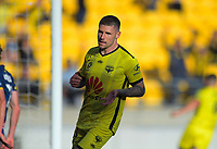 Phoenix's Gary Hooper turns to celebrate scoring the opening goal during the A-League football match between Wellington Phoenix and Central Coast Mariners at Westpac Stadium in Wellington, New Zealand on Saturday, 4 January 2020. Photo: Dave Lintott / lintottphoto.co.nz
