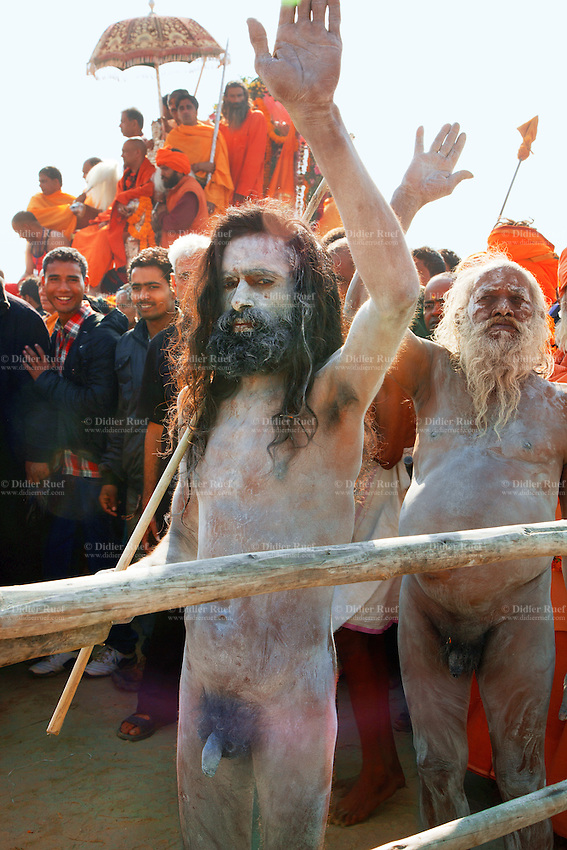 """India. Uttar Pradesh state. Allahabad. Maha Kumbh Mela. Royal bath on Mauni Amavasya Snan (Dark moon). The ritual """"Royal Bath"""" is timed to match an auspicious planetary alignment, when believers say spiritual energy flows to earth. Naga (naked) Sadhus celebrate their joy after taking a dip in Sangam and worship the river Ganges. The Kumbh Mela, believed to be the largest religious gathering is held every 12 years on the banks of the 'Sangam'- the confluence of the holy rivers Ganga, Yamuna and the mythical Saraswati. In 2013, it is estimated that nearly 80 million devotees took a bath in the water of the holy river Ganges. The belief is that bathing and taking a holy dip will wash and free one from all the past sins, get salvation and paves the way for Moksha (meaning liberation from the cycle of Life, Death and Rebirth). Bathing in the holy waters of Ganga is believed to be most auspicious at the time of Kumbh Mela, because the water is charged with positive healing effects and enhanced with electromagnetic radiations of the Sun, Moon and Jupiter. In Hinduism, Sadhu (good; good man, holy man) denotes an ascetic, wandering monk. Sadhus are sanyasi, or renunciates, who have left behind all material attachments. They are renouncers who have chosen to live a life apart from or on the edges of society in order to focus on their own spiritual practice. The significance of nakedness is that they will not have any worldly ties to material belongings, even something as simple as clothes. A Sadhu is usually referred to as Baba by common people. The Maha (great) Kumbh Mela, which comes after 12 Purna Kumbh Mela, or 144 years, is always held at Allahabad. Uttar Pradesh (abbreviated U.P.) is a state located in northern India. 10.02.13 © 2013 Didier Ruef"""