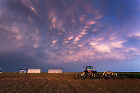 Pink Mammatus Clouds above a Tractor in Leoti, KS, May 21, 2016