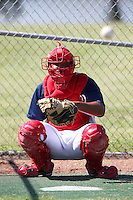 Washington Nationals catcher Raudy Read #20 in the bullpen during an Instructional League game against the national team from Italy at Carl Barger Training Complex on September 28, 2011 in Viera, Florida.  (Mike Janes/Four Seam Images)