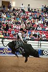 January 2009: Bullrider Cooper Kanngiesser rides Hot Diggity Damn at the CBR World Championships in Las Vegas