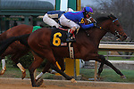 January 18, 2016: #6 Discreetness crossing the finish line in the Smarty Jones Stakes at Oaklawn Park in Hot Springs, AR. Justin Manning/ESW/CSM