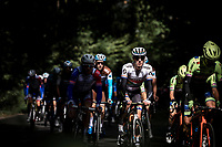 Daryl Impey (RSA/Mitchelton Scott) in the peloton.<br /> <br /> 99th Brussels Cycling Classic 2019<br /> One Day Race: Brussels > Brussels 189.4km<br /> <br /> ©kramon
