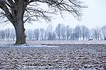 [Fuer die Nutzung gelten die jeweils gueltigen Allgemeinen Liefer-und Geschaeftsbedingungen. Nutzung nur gegen Verwendungsmeldung und Nachweis. Download der AGB unter http://www.image-box.com oder werden auf Anfrage zugesendet. Freigabe ist vorher erforderlich. Jede Nutzung des Fotos ist honorarpflichtig gemaess derzeit gueltiger MFM Liste - Kontakt, Uwe Schmid-Fotografie, Duisburg, Tel. (+49).2065.677997, ..archiv@image-box.com, www.image-box.com]