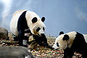 Visitors line up to see giant panda Xiang Xiang at Ueno Zoo in Tokyo