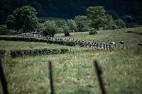 Peloton up the infamous La Redoute. <br /> <br /> Baloise Belgium Tour 2019<br /> Stage 4: Seraing – Seraing 151.1km<br /> ©kramon