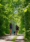 Deutschland, Bayern, Toelzer Land, Dietramszell: zwei junge Frauen mit Hund auf dem Weg  zum Waldweiher | Germany, Bavaria, Toelzer Land, Dietramszell: two young women and dog