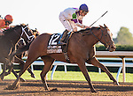 LEXINGTON, KY - OCT 22: Lightstream, #12, ridden by Julien Leparoux and trained by Brian A. Lynch wins the Lexus Raven Run Stakes at Keeneland Racetrack in Lexington, KY. (Photo by Samantha Bussanich/Eclipse Sportswire/Getty Images)