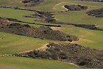 Bitronot Ruhama in Besor region