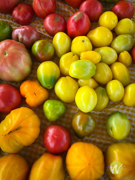 Farmers Market tomato assortment.