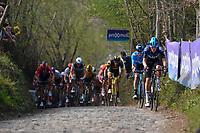 up the Koppenberg<br /> <br /> 103rd Ronde van Vlaanderen 2019<br /> One day race from Antwerp to Oudenaarde (BEL/270km)<br /> <br /> ©kramon