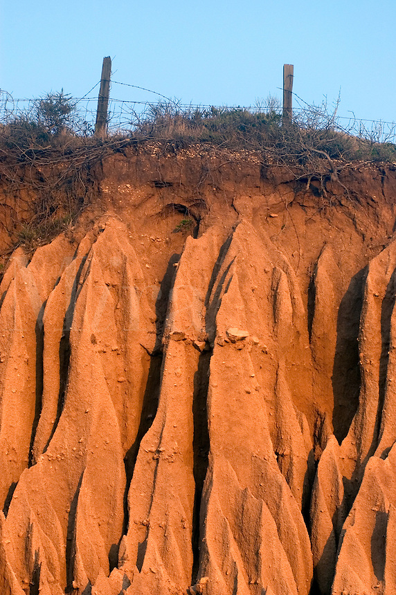 SOIL EROSION creates beautiful fluted shapes and is caused by a roadway cut into a hillside - BIG SUR, CALIFORNIA