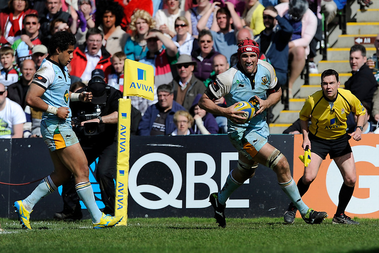 Christian Day of Northampton Saints runs in a late try during the Aviva Premiership match between Harlequins and Northampton Saints at the Twickenham Stoop on Saturday 4th May 2013 (Photo by Rob Munro)