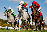 LAUREL, MARYLAND - OCTOBER 22: Devilish Love #2 (white cap), ridden by Alex Cintron, outduels Complete St. #1, ridden by Forest Boyce to win the Maryland Million Ladies Stakes on Maryland Million Day at Laurel Park on October 22, 2016 in Laurel, Maryland. (Photo by Scott Serio/Eclipse Sportswire/Getty Images)