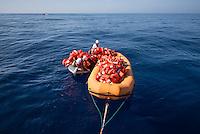 Sea Watch-2.<br /> Die Sea Watch-2 bei ihrer 13. SAR-Mission vor der libyschen Kueste.<br /> Im Bild: Ein Schlauchboot der Sea Watch-2 auf dem die Rettungswesten zu den Schlauchbooten der Gefluechteten transportiert werden.<br /> Im Hintergrund links ein spanisches Kriegsschiff der Frontex-Mission. Es hat die Rettung der Menschen (im Schlauchboot hinten rechts) beobachtet und anschliessend die leeren Schlauchboote in Brand gesetzt.<br /> 20.10.2016, Mediterranean Sea<br /> Copyright: Christian-Ditsch.de<br /> [Inhaltsveraendernde Manipulation des Fotos nur nach ausdruecklicher Genehmigung des Fotografen. Vereinbarungen ueber Abtretung von Persoenlichkeitsrechten/Model Release der abgebildeten Person/Personen liegen nicht vor. NO MODEL RELEASE! Nur fuer Redaktionelle Zwecke. Don't publish without copyright Christian-Ditsch.de, Veroeffentlichung nur mit Fotografennennung, sowie gegen Honorar, MwSt. und Beleg. Konto: I N G - D i B a, IBAN DE58500105175400192269, BIC INGDDEFFXXX, Kontakt: post@christian-ditsch.de<br /> Bei der Bearbeitung der Dateiinformationen darf die Urheberkennzeichnung in den EXIF- und  IPTC-Daten nicht entfernt werden, diese sind in digitalen Medien nach §95c UrhG rechtlich geschuetzt. Der Urhebervermerk wird gemaess §13 UrhG verlangt.]