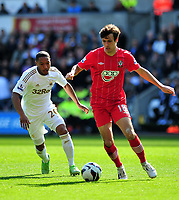 Pictured: (L-R) Swansea's Jonathan De Guzman chasing Jack Cork of Southampton.<br />
