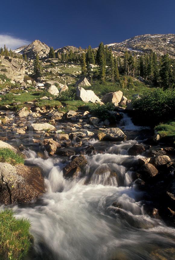 mountain, river, Wind River Range, Bridger-Teton National Forest, WY, Wyoming, Mountain stream flows down through the Wind River Range Mountains in the Bridger-Teton Nat'l Forest in Wyoming.