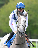 Jacinta deVega ridden by Rossa Ryan goes down to the start of The British EBF Novice Stakes during Horse Racing at Salisbury Racecourse on 11th September 2020