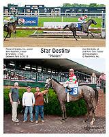 Star Destiny winning at Delaware Park on 6/20/13