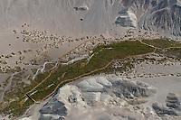 aerial photograph of the Salt Creek Interpretive Trail boardwalk, Death Valley National Park, northern Mojave Desert, California