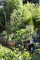 A burgeoning vegetable garden is contained behind hazelnut fencing