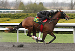 April 03, 2014: Hip 15 Speightstown - Mystic Soul consigned by Eddie Woods worked 1/8 in 10:0.  Candice Chavez/ESW/CSM