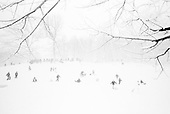 Brooklyn, New York<br /> February 10, 2010<br /> <br /> Sledding in a snow storm in Prospect Park.
