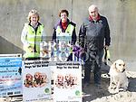 Guide Dog Sponsored Walk 2017