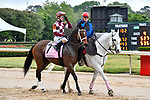 HOT SPRINGS, AR - APRIL 13:  Apple Blossom Handicap at Oaklawn Park on April 13, 2018 in Hot Springs, Arkansas. #7 Farrell with jockey Channing Hill. (Photo by Ted McClenning/Eclipse Sportswire/Getty Images)