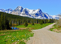 The road into Cut Bank Campground Glacier NP. Rockies in the distance. Cut Bank Creek on the left.