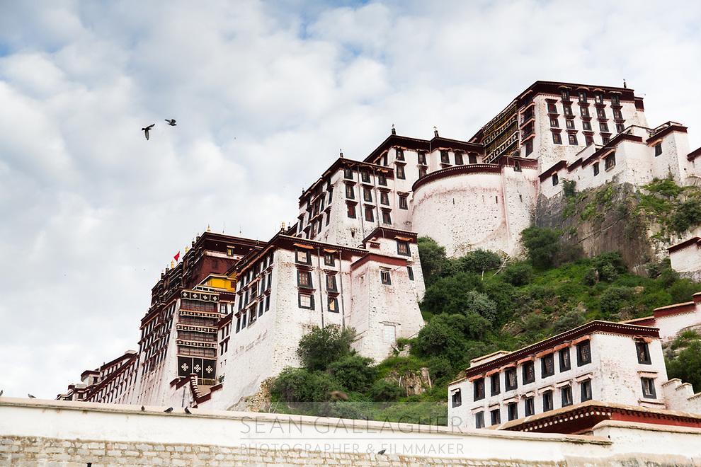 Birds fly near the Potala Palace in central Lhasa, as dawn breaks across the Tibetan capital.