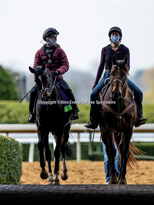 November 5, 2020: Kameko, trained by trainer Andrew M. Balding, exercises in preparation for the Breeders' Cup Mile at Keeneland Racetrack in Lexington, Kentucky on November 5, 2020. Alex Evers/Eclipse Sportswire/Breeders Cup