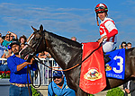 August 10, 2019: Bricks and Mortar, trained by Chad Brown, wins the Arlington Million (G1) at Arlington Park on August 10, 2019 in Arlington Heights, IL. Jessica Morgan/ESW/CSM