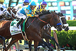 June 6, 2015: Start of the Belmont Stakes: the eight contenders, including American Pharoah, Victor Espinoza up, and Mubtaahij (#1), with Irad Ortiz Jr., head toward the clubhouse turn. American Pharoah, Victor Espinoza up, wins the 147th running of the Grade I  Belmont Stakes and with it the Triple Crown at Belmont Park, Elmont, NY.  Joan Fairman Kanes/ESW/CSM