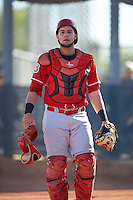 Cincinnati Reds Ernesto Liberatore (86) during an Instructional League game against the Milwaukee Brewers on October 14, 2016 at the Maryvale Baseball Park Training Complex in Maryvale, Arizona.  (Mike Janes/Four Seam Images)