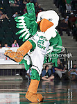 North Texas Mean Green mascot,Scrappy, in action during the NCAA  basketball game between the University of Louisiana at Monroe Warhawks and the University of North Texas Mean Green at the North Texas Coliseum,the Super Pit, in Denton, Texas. ULM defeated UNT 82 to 75...