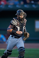 Missoula Osprey catcher Luvin Valbuena (38) during a Pioneer League game against the Idaho Falls Chukars at Melaleuca Field on August 20, 2019 in Idaho Falls, Idaho. Idaho Falls defeated Missoula 6-3. (Zachary Lucy/Four Seam Images)