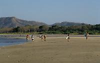 Costa Rica - file Photo -Tamarindo beach