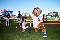 Chicago Cubs mascot stretches along side Triston Casas (26) of American Heritage High School in Pembroke Pines, Florida before the Under Armour All-American Game presented by Baseball Factory on July 29, 2017 at Wrigley Field in Chicago, Illinois.  (Mike Janes/Four Seam Images)