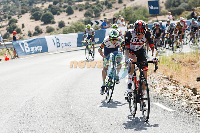 Rafal Majka (POL) UAE Team Emirates attacks off the front of the peloton on the Puerto de Pedro Bernardo during Stage 15 of La Vuelta d'Espana 2021, running 197.5km from Navalmoral de la Mata to El Barraco, Spain. 29th August 2021.     <br /> Picture: Luis Angel Gomez/Photogomezsport | Cyclefile<br /> <br /> All photos usage must carry mandatory copyright credit (© Cyclefile | Luis Angel Gomez/Photogomezsport)