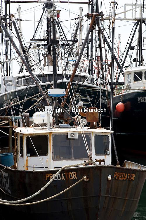 Fishing boats at the dock