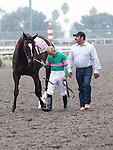 Zenyatta, led by her groom, Mario Espinoza, and jockey Mike Smith bids farewell to fans at Hollywood Park, Inglewood, CA, before retiring to Lane's End Farm in Kentucky