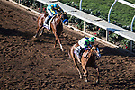 DEL MAR, CA - NOVEMBER 04: Good Magic #6, ridden by Jose Ortiz, leads the field while Solomini #2, ridden by Flavien Prat, tries to keep up on Day 2 of the 2017 Breeders' Cup World Championships at Del Mar Thoroughbred Club on November 4, 2017 in Del Mar, California. (Photo by Ting Shen/Eclipse Sportswire/Breeders Cup)