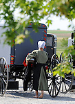 """Bare foot Amish girl walks toward buggies in Pennsylvania Dutch Country Amish Country in Lancaster County PA, Pennsylvania Dutch in Amish Country Lancaster County Pennsylvania, Amish, Horse and buggy with amish family on backroads of Pennsylvainia, buggy, amish family, buggy and horse, Commonwealth of Pennsylvania, Commonwealth of Pennsylvania, natives, Northeasterners, Middle Atlantic region, Philadelphia, Keystone State, 1802, Thirteen Colonies, Declaration of Independence, State of Independence, Liberty, Conestoga wagons, Quaker Province, Founding Fathers, 1774, Constitution written, Photography history, Fine art by Ron Bennett Photography.com, Stock Photography, Fine art Photography and Stock Photography by Ronald T. Bennett Photography ©, All rights reserved copyright Ron Bennett Photography.Com, FINE ART and STOCK PHOTOGRAPHY FOR SALE, CLICK ON  """"ADD TO CART"""" FOR PRICING,"""