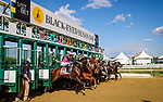 May 14, 2021 : Last Judgment (Congrats) (Jose Ortiz up, Michael Maker trainer, Michael Dubb, Steve Hornstock, Bethlehem Stables and Nice Guys Stables owners) wins the Pimlico Special (G3) on Black-Eyed Susan Day at Pimlico Race Track in Baltimore, Maryland on May 14, 2021. Wendy Wooley/Eclipse Sportswire/CSM