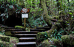Connection to the Wild Pacific Trail at He-Tin-Kis Park  near the fishing town of Ucluelet, British Columbia and Pacific Rim National Park, Canada.  Ucluelet is at the south end of Pacific Rim National Park
