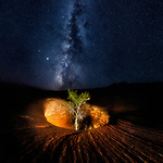 Pictured: The Milky Way at Dance Hall Rock, Utah<br /> <br /> This beautiful series of photographs shows the Milky Way as seen from different continents around the world.   Photographer Hua Zhu travelled the globe over the course of four years to capture the starry night sky from already stunning locations. <br /> <br /> The medical professor visited picturesque landmarks in the USA, Kenya, New Zealand and China, including the Great Wall in Beijing.  Chinese Dr Zhu, who lives in New Jersey, USA, said he meticulously planned the trips by researching when the Milky Way would be on show.   SEE OUR COPY FOR DETAILS<br /> <br /> Please byline: Hua Zhu/Solent News<br /> <br /> © Hua Zhu/Solent News & Photo Agency<br /> UK +44 (0) 2380 458800