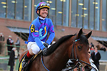 HOT SPRINGS, AR - JANUARY 18: Discreetness #6, ridden by Jon Court, after winning the Smarty Jones Stakes at Oaklawn Park on January 18, 2016 in Hot Springs, Arkansas. (Photo by Justin Manning)